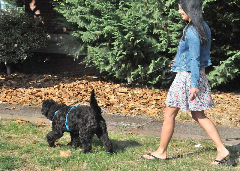 SUSAN BRANNON - Kristin Delaney takes a customer out for a walk last week in Newberg.