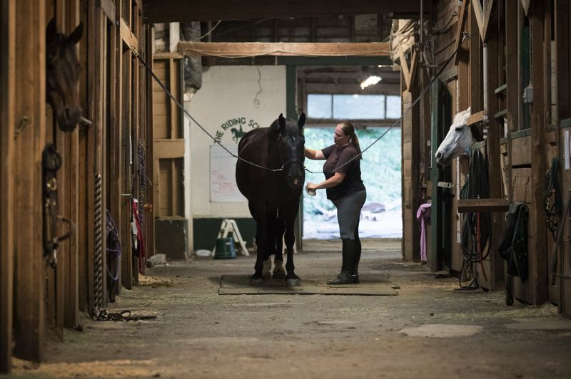 PORTLAND TRIBUNE: JAIME VALDEZ - Taryn McAllister, director of the Lake Oswego Hunt Club, brushes Zeus after a ride.