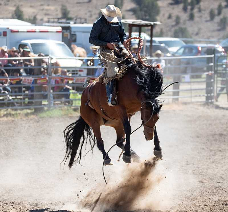 LON AUSTIN/CENTRAL OREGONIAN - Mike McBeth wins the ranch bronc riding at the Paulina Rodeo with a score of 81. McBeth was able to stay on despite multiple high, acrobatic leaps from the bronc that he was riding.
