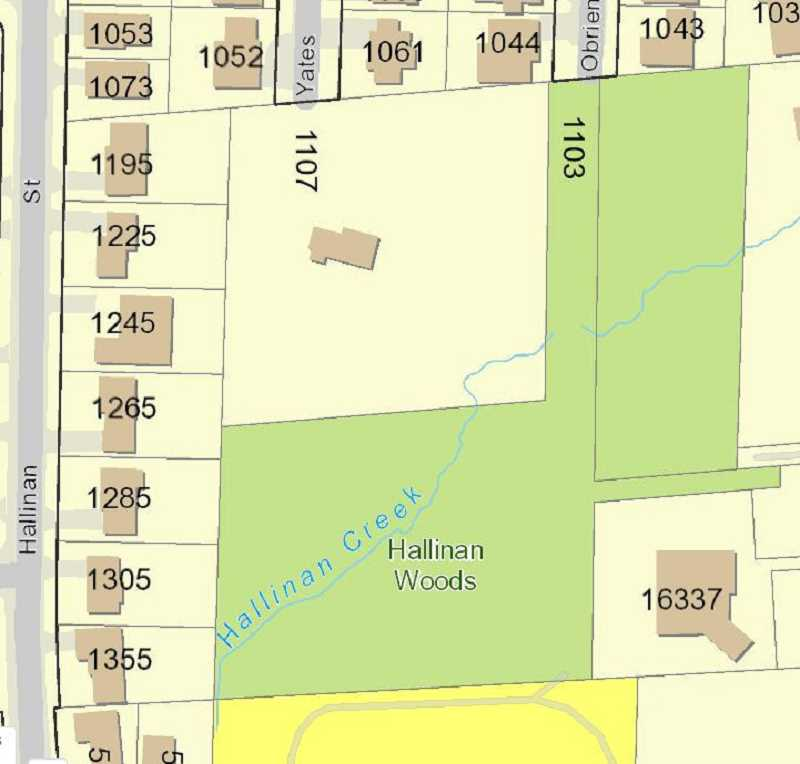 PHOTO COURTESY OF CITY OF LAKE OSWEGO - The Yates Street property slated for development, numbered 1107 on this map, is located next to Hallinan Woods and currently forested, apart from a single house. Neighbors have fought to have the property added to Hallinan Woods, or at least to protect as much of it as possible from development.