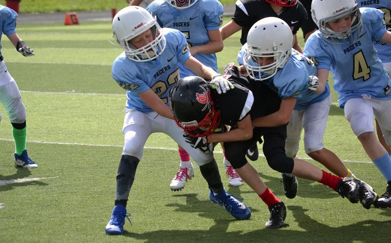local sports photo submitted - 800×498