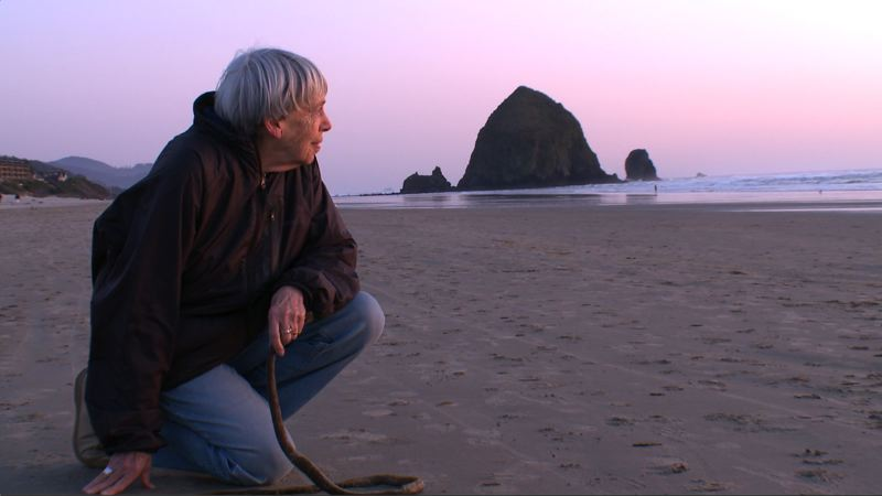 COURTESY PHOTO - The film 'The Worlds of Ursula K. Le Guin' explores the experiences of the late Portland author, including her fascination with Cannon Beach (above) and travels abroad.