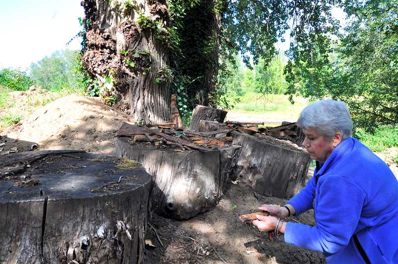 TIDINGS FILE PHOTO - After her friends Dorothy and Virgil Maddax died, Alma Coston worked tirelessly to ensure that the Maddax Woods property was preserved in its natural state.