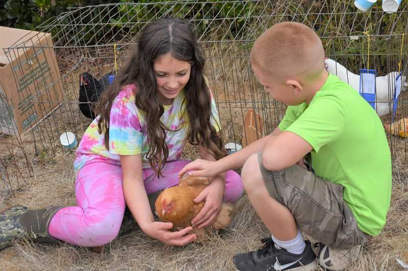 ESTACADA NEWS PHOTO: EMILY LINDSTRAND - Children at the Springwater Community Fair play with a new feathered friend.