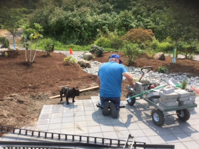 COURTESY PHOTO: ALYSON HUNTTING - Jim Card puts down pavers at Ebatsu Plaza near Tsuru Island, accompanied by his sidekick, Waylon.