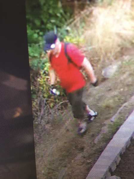 COURTESY PHOTO: CCSO - The suspect was caught on security cameras.