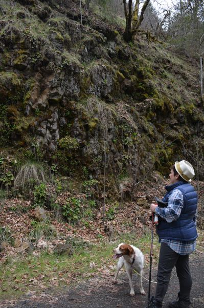 SPOTLIGHT FILE PHOTO - JJ Duehren of Scappoose hikes with her dog along the Crown Zellerbach Trail. The trail is one of the most notable natural features in Columbia County and could be a key asset in tourism marketing.