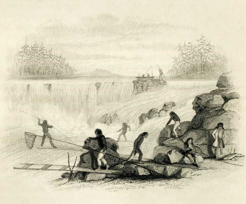 SUBMITTED DRAWING: OLD OREGON PHOTOS - The Grand Ronde tribes have a long history of fishing at the falls, though other tribes have claimed that the Grand Ronde is overstating its claim to the territory.