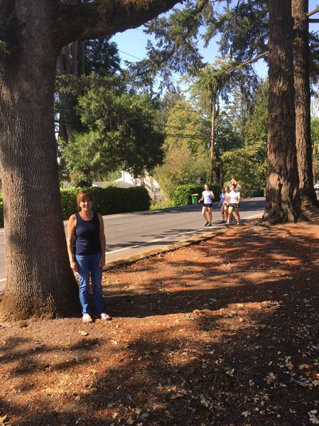 TIMES PHOTO: PETER WONG - Terry Glickman stands by a 120-year-old white oak at Southwest Menlo Drive and 3rd Street in Beaverton. A planned sidewalk would leave that tree intact, but two Douglas firs to the north are likely to go. The three trees are in the city right of way in front of the home of Karen Smith. This photo was taken Sept. 6, before a total of 19 trees were removed on Menlo Drive.