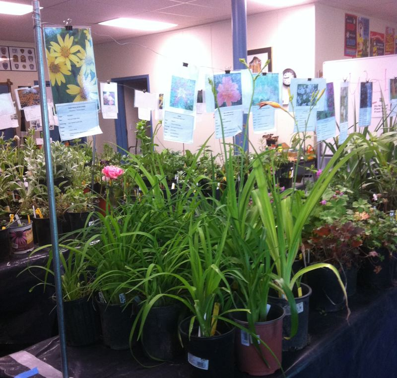 FILE PHOTO - Trade and talk plants with other gardeners at a Neighborhood Plant Swap this weekend. See listing for details.