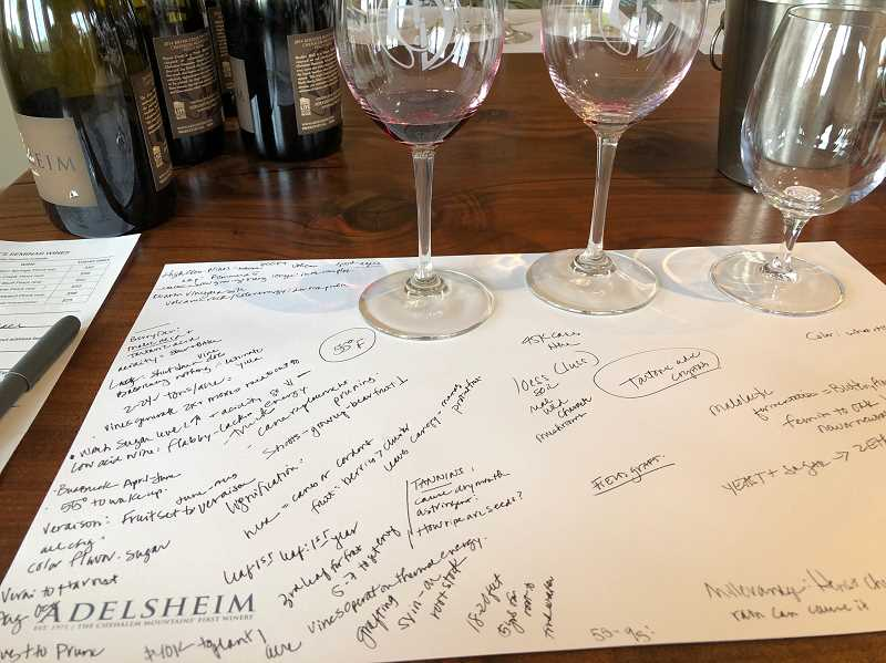 Barb Randalls class at Adelsheim included tasting wines from grapes grown in different blocks in the vineyard.