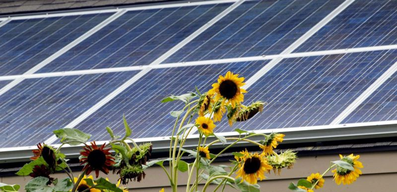 FILE PHOTO - The state's energy tax credit program funded solar panels like these shown here.