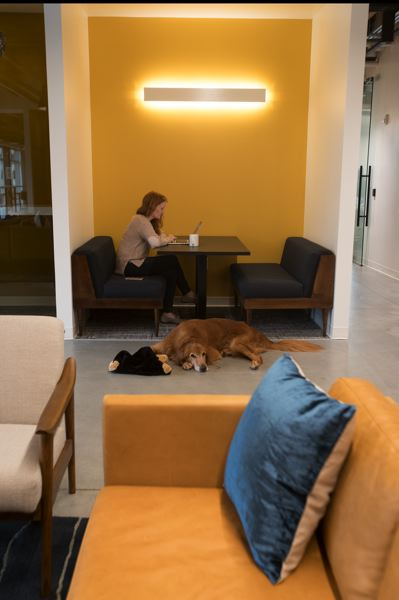PAMPLIN MEDIA GROUP: JAIME VALDEZ - Sara Gates, editrial director at Vacasa, working on her workflow with Oscar the golden retriever. Well-behaved pets are welcome in the office.