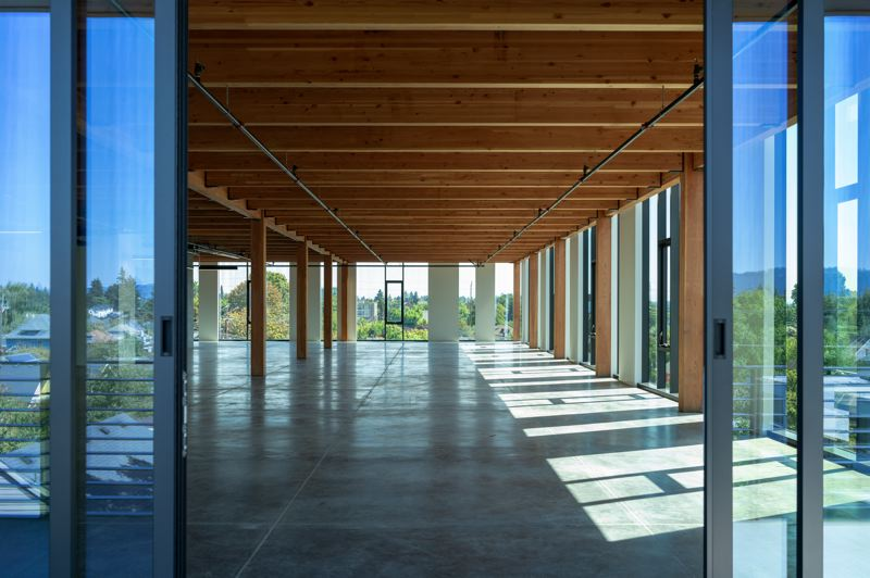 DANIEL KAVEN - The Silica's concrete base gives way to timber framing above, with wood ceilings and columns revealed through a glass curtain wall.