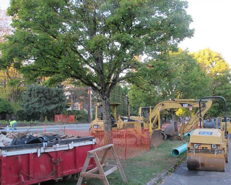 PHOTO BY BILL GALLAGHER - Protective fences surround trees amidst heavy machinery along SW Vermont Street.  Sections of Vermont between SW Oleson Road and SW 30th Ave. will be closed down during November.