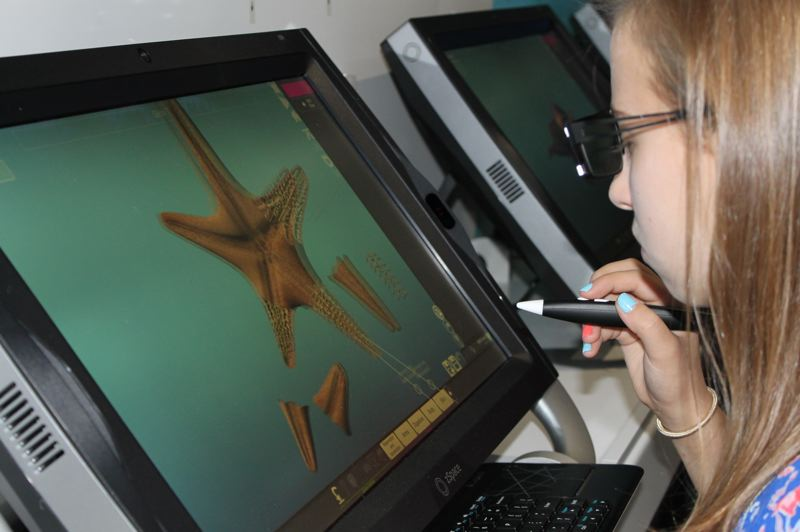 OUTLOOK PHOTO: TERESA CARSON - 'That's so cool,' this student said as she began cutting apart a virtual starfish to study its inner workings.