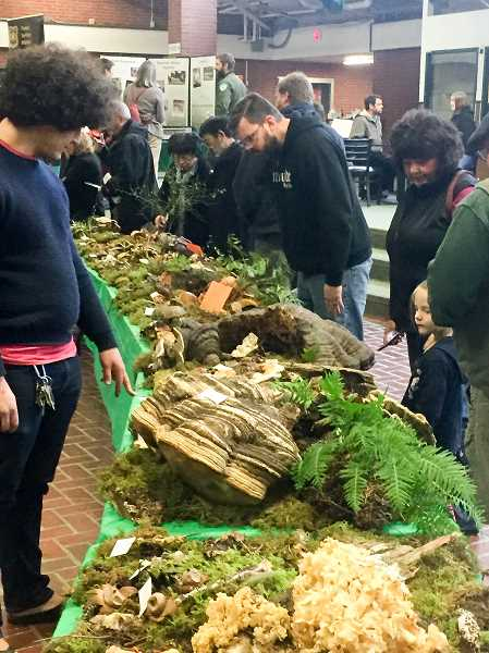 FILE PHOTO - Attendees of the Estacada Festival of the Fungus admire the events mushroom display.