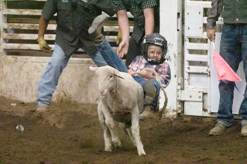 PHOTO BY JASON BLACKMAN - A young rider hangs on tight while trying to stay on a bucking sheep.