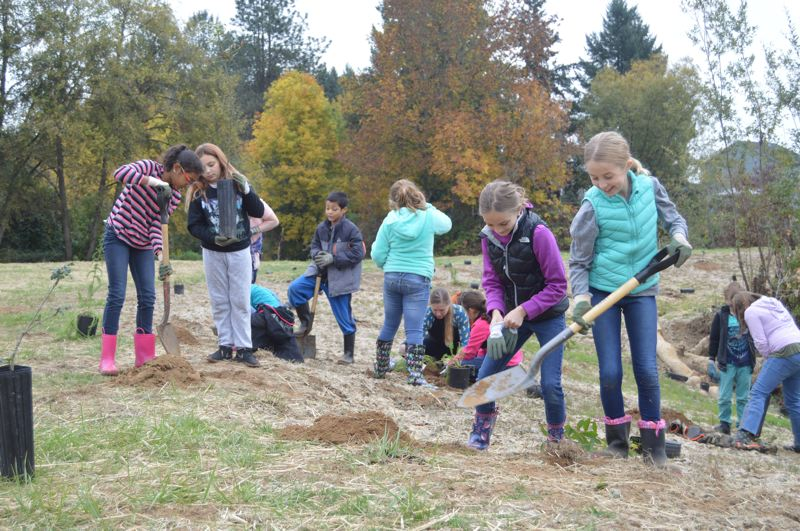 SPOTLIGHT PHOTO: NICOLE THILL-PACHECO - Fourth-grade students from Otto Petersen Elementary School helped plant hundreds of native species along the banks of Scappoose Creek this week. Pictured here from left to right, Jazmine Tate, Riley Beldon, Liliana Peterson and Alexa Sheldon dig holes for their plantings.