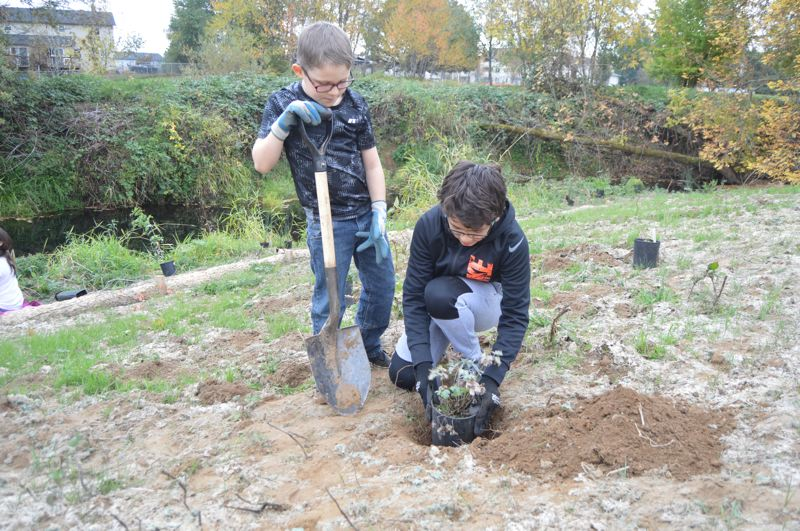 SPOTLIGHT PHOTO: NICOLE THILL-PACHECO - Fourth-graders Landen Limbaugh and Elijah Greenan-Biggs check to see if their shrub will fit before removing it from the black, plastic container. The boys said they enjoyed the project and took the time to name each plant they put into the ground.