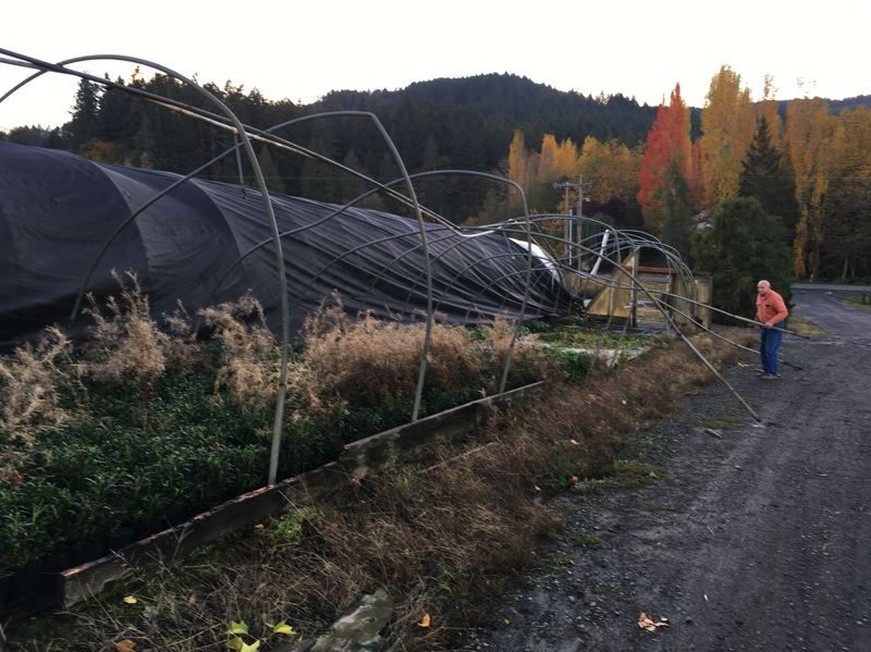 COURTESY PHOTO: DEBBIE ROOFENER - A possible tornado in the Forest Grove area caused major damage to four greenhouses, said nursery owners Jim and Debbie Roofener.