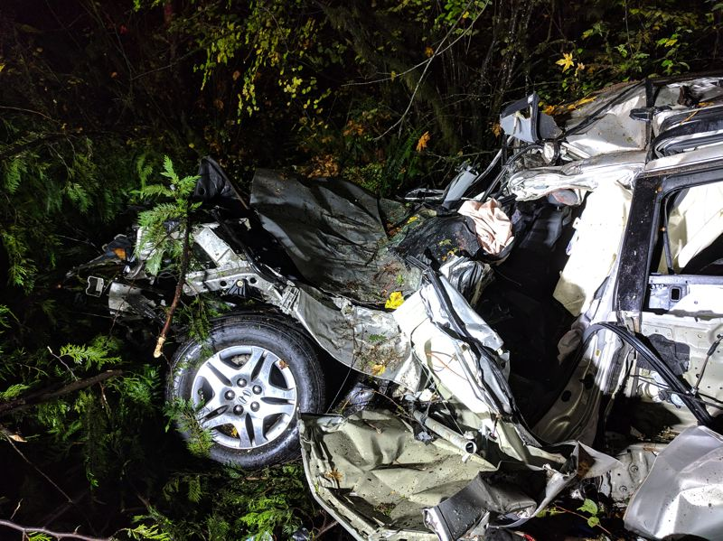 POLICE PHOTO - Oregon State Police released this photo of the crash that killed Kevin Ludwig.