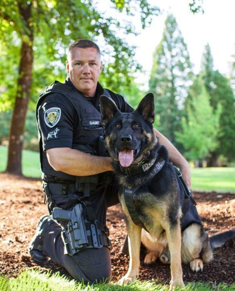 COURTESY PHOTO - Beaverton Police Officer Brian Gaunt and his partner, K-9 Ike, tracked a suspected intoxicated driver and located him hiding in the woods of unincorporated Washington County on Thursday, Nov. 1.