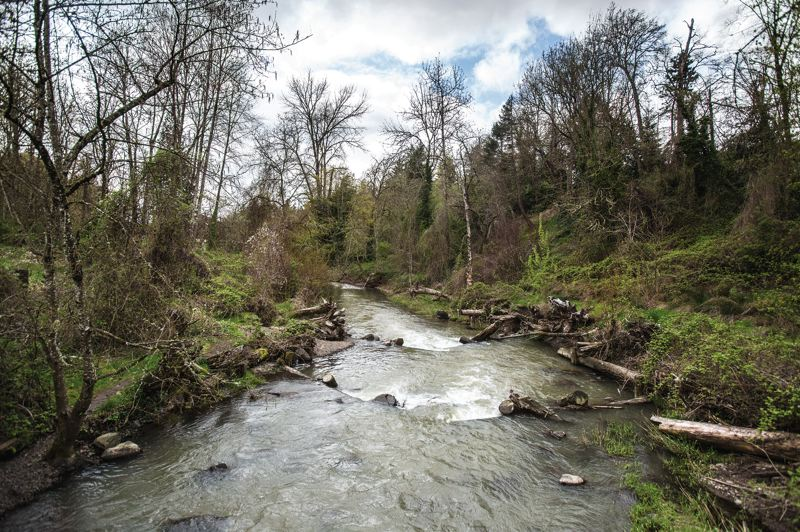 PORTLAND TRIBUNE FILE PHOTO  - A stretch of Johnson Creek near where Precision Castparts emitted toxic materials in the past.