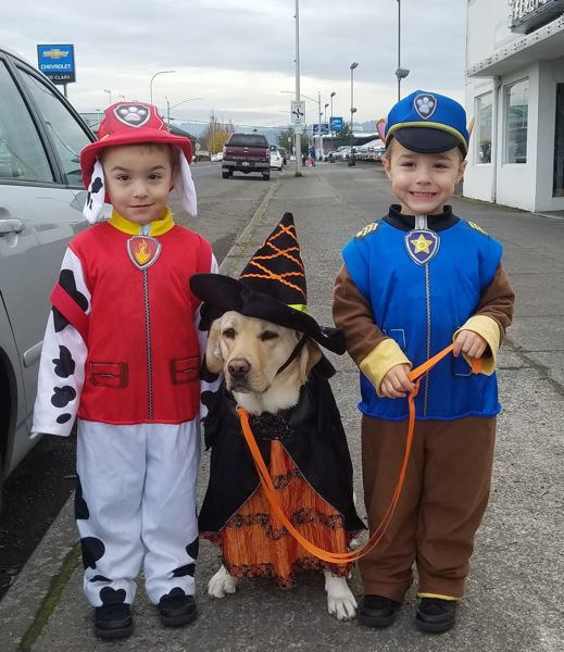 PHOTO COURTESY OF JANICE FALTERSACK - Robert and Paul Adams, dressed as members of Paw Patrol, join Tilda, a service dog recently acquired by the Columbia County Crime Victims Assistance Program during early Halloween festivities.