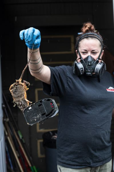 TRIBUNE PHOTO: JONATHAN HOUSE - Sarah DeHart of Steri-Clean Oregon holds a long-dead rat in a trap at a hoarder home. The homeowner argued in favor of keeping the glue trap.