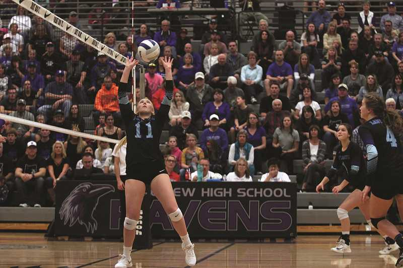 PHIL HAWKINS - St. Paul junior Karlee Southerland sets a teammate up for a potential point in the fourth set of the Buckaroos' 3-1 win over the Powder Valley Badgers in the 1A volleyball championship game at Ridgeview High School in Redmond on Saturday.