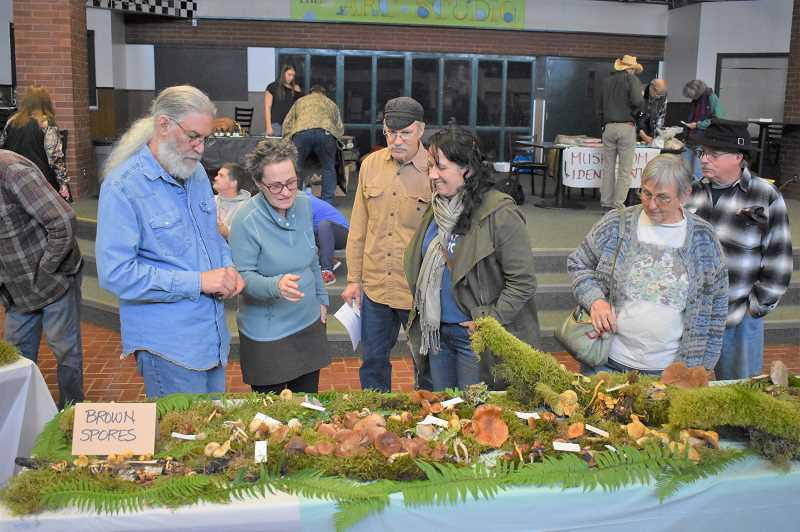 ESTACADA NEWS PHOTO: EMILY LINDSTRAND - Attendees of the 2018 Estacada Festival of the Fungus admire the events mushroom display.