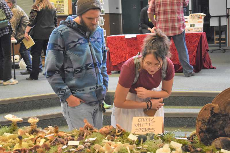ESTACADA NEWS PHOTO: EMILY LINDSTRAND - Festival of the Fungus attendees admire mushrooms on display last weekend.