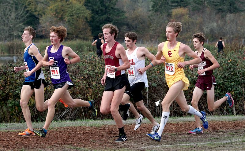 PHOTO BY KIT MACAVOY - Sherwood High School senior Henry Giles (third from left) ran to 15th place at the Class 6A state cross country championships.