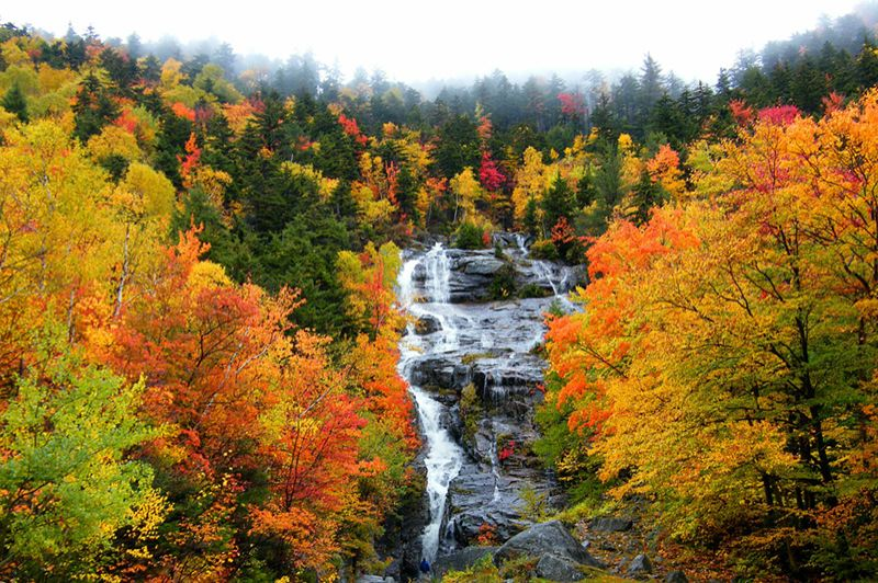 COURTESY: STANLEY ZIMNY, FLICKRCC. - Thanks to global warming, we can expect shorter and less intense fall foliage displays in the United States moving forward.