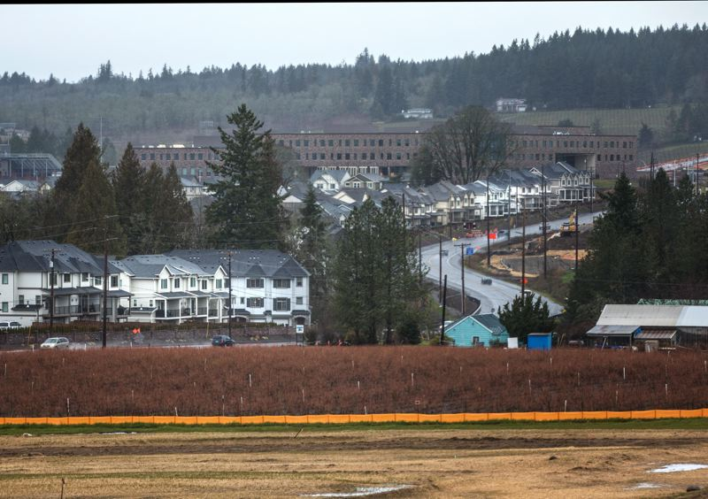 FILE PHOTO - Development in the River Terrace and South Cooper Mountain areas of Tigard and Beaverton is helping to fuel population growth in House District 26.