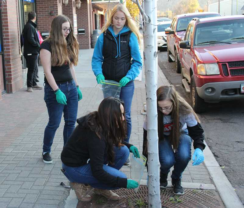 JASON CHANEY - Members of Crook County High School's Students Against Destructive Decisions pick up discarded cigarette butts Thursday afternoon near Bowman Museum. Pictured left to right are Mackenzie Sutherlin, Emily Mize (standing), Cindy Vargas and Olivia Cooper.