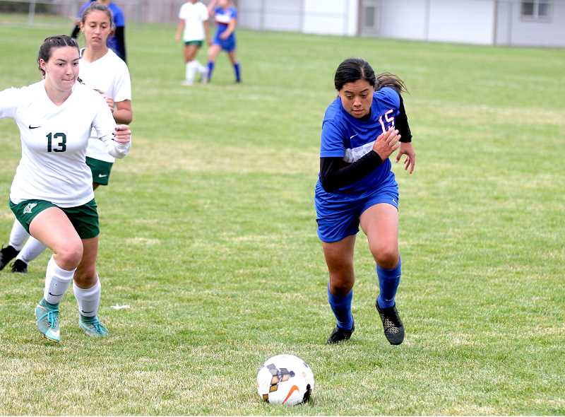 STEELE HAUGEN - Jackie Zamora-Heath earned second team with seven goals and one assist.