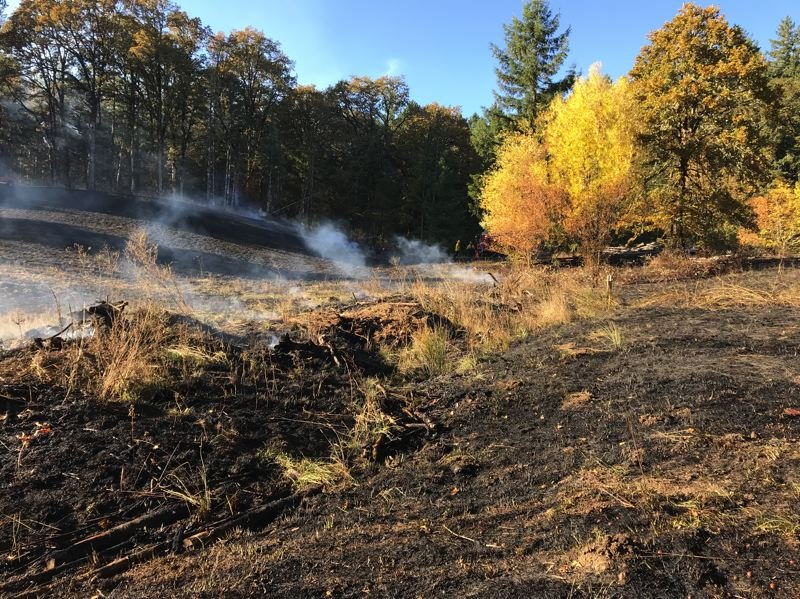 COURTESY PHOTO: FOREST GROVE FIRE & RESCUE - This brush fire in western Washington County could have gotten out of hand. Fortunately, our local firefighters were on hand to stop it.