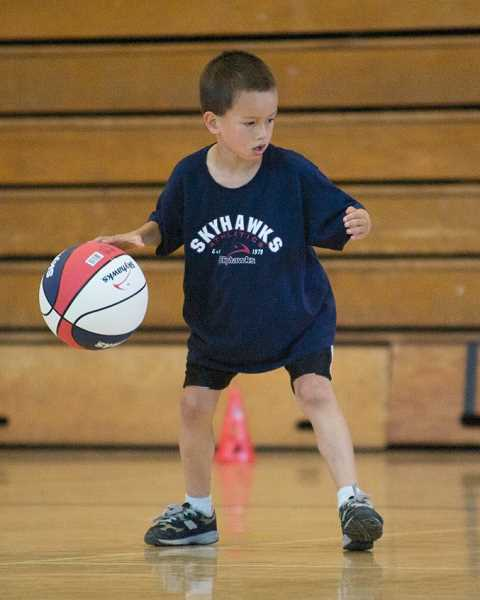 SUBMITTED PHOTO  - Skyhawks will offer basketball and volleyball camps during winter break. Sign up now.