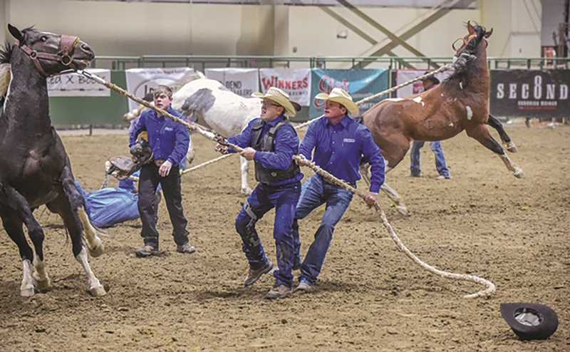 COURTESY PHOTO - From left, Dakota Lyons, Ricky Lyons and David Gregory work to subdue a horse at one of this year's Wild Horse Racing competitions. Ricky Lyons was prepared to retire after the team finished second at the 2017 National Championship, but was convinced to come back for one final season in 2018, ultimately finishing his career with a title.