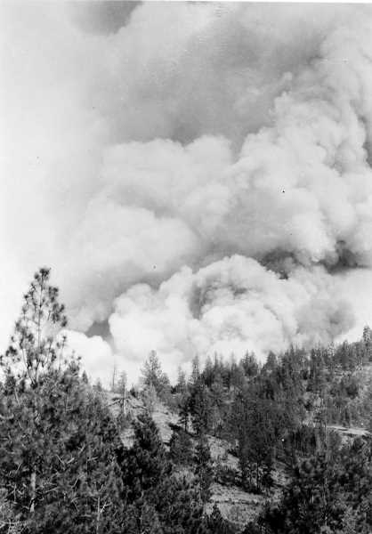 PHOTO COURTESY OF BOWMAN MUSEUM  - A forest fire on the Ochoco National Forest is captured on film in 1930.