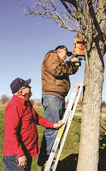 HOLLY SCHOLZ/CENTRAL OREGONIAN   - Trevor Russell holds the ladder for Allan Smith as he secures a birdhouse to a tree at Meadow Lakes Golf Course. Each birdhouse has Russell's initials on the front and a number on the bottom.