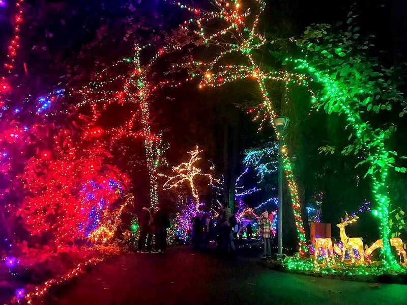 PHOTO COURTESY: THE GROTTO - The Grotto's 31st Annual Christmas Festival of Lights opens Friday, Nov. 23 in Portland.