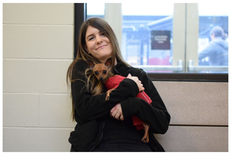 COURTESY PHOTO: OREGON HUMANE SOCIETY - Brittany Grenfell said she fell in love with Nelson when she saw him in Oregon Humane Society kennel. She was first in line Monday, Dec. 3, to adopt Nelson.