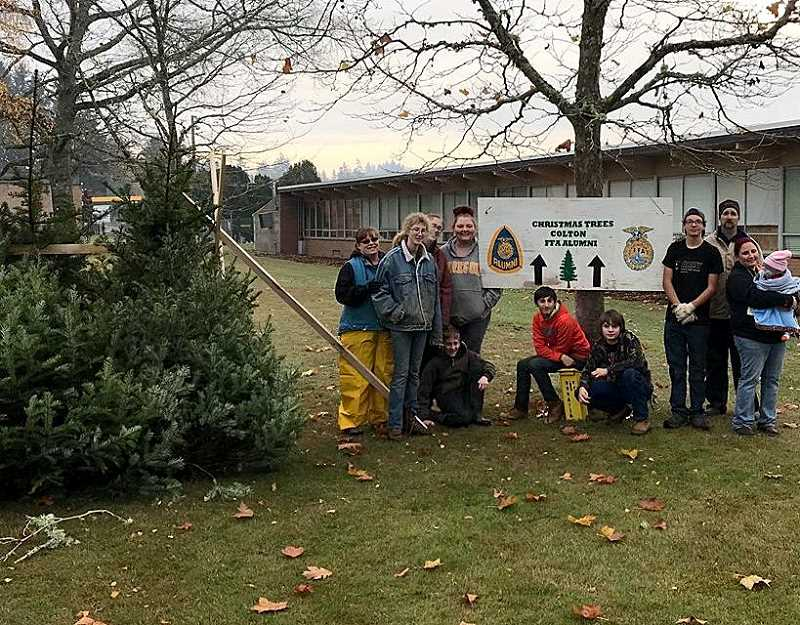 CINDY FAMA - For the next two weekends, Colton FFA will have Doug Fir Christmas trees available by donation.