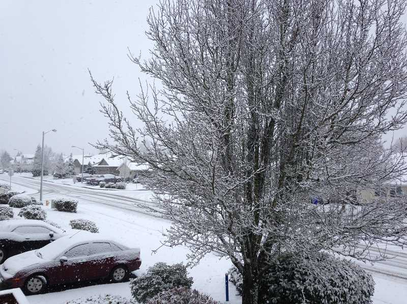 PIONEER FILE PHOTO - Molalla and Colton School Districts have set plans in the event of inclement weather.