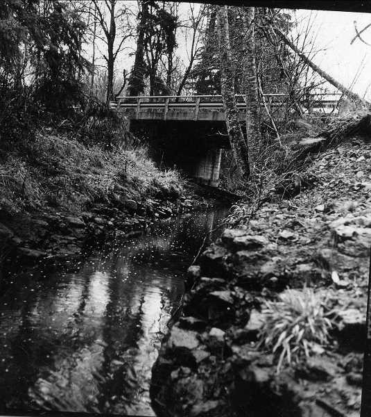 PHOTO COURTESY OF THE LAKE OSWEGO PUBLIC LIBRARY - Bryant Nature Park, a 17-acre wildlife area at the corner of Childs and Canal roads, is among the many places named for Charles Wesley Bryant. A main trail parallels the historic Oswego Canal. Remnants of an old fruit cellar from a stone cottage is nestled into the hillside by the trail.