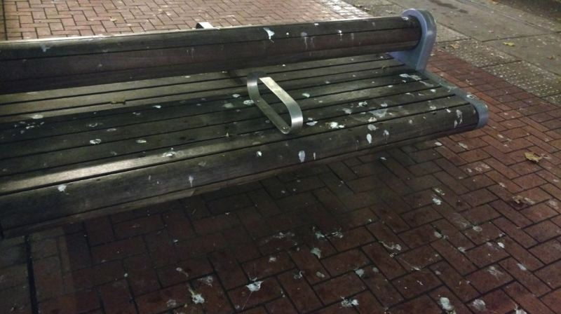 COURTESY TRIMET - A bird-poop splattered park bench in the Portland Transit Mall is shown here.