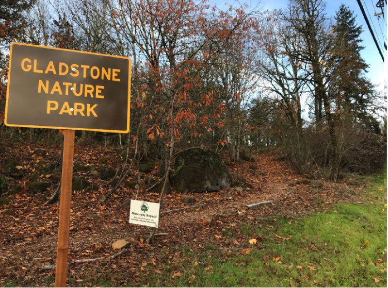SUBMITTED PHOTO - The Friends Of Gladstone Nature Park have cleared the park of blackberries and other invasive species.